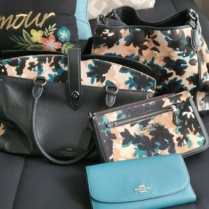 Coach Fall Leaf Collection